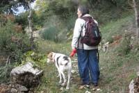 stemnitsa-agios-dimitrios-2